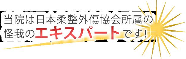 日本柔整外傷協会所属のエキスパート